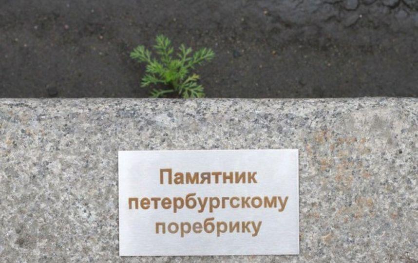 В Санкт-Петербурге появился памятник поребрику
