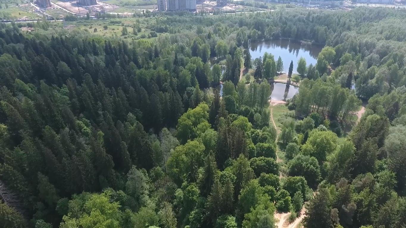 Воздух - Шуваловский парк